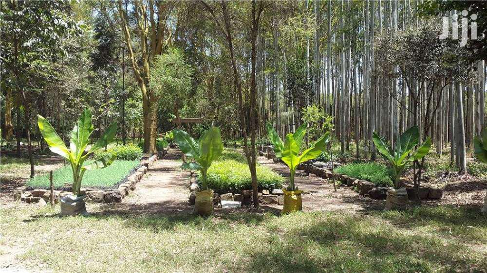 Narok 181 Acres Farm Next To Olololunga. | Land & Plots For Sale for sale in Ololulung'A, Narok, Kenya