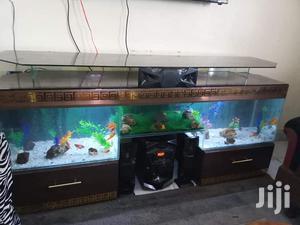 Premium Tv Stand Aquarium