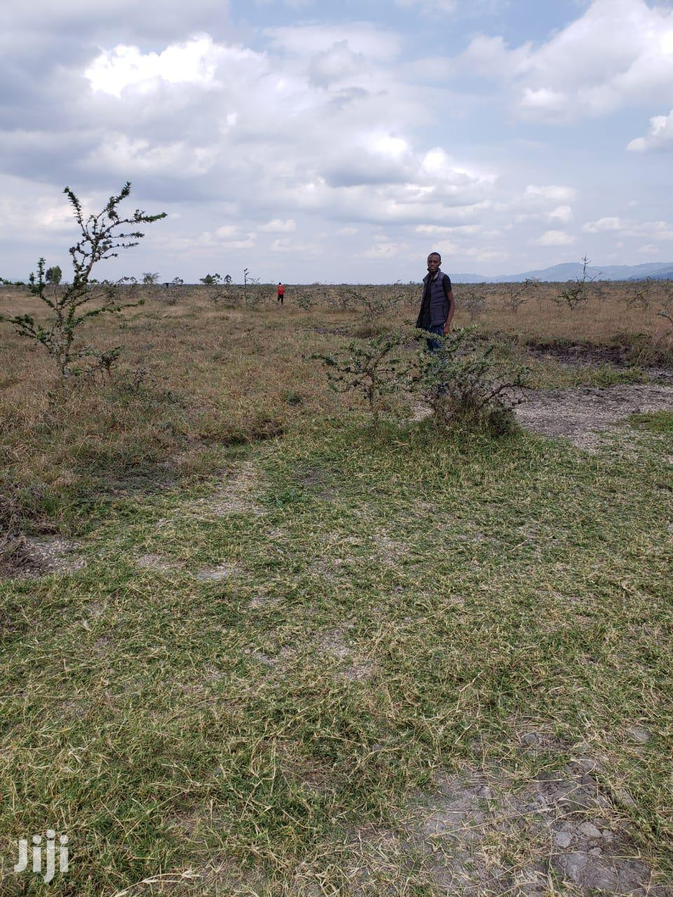 Archive: Affordable 1/8 Acre Plots for Sale Along Kangundo Road.