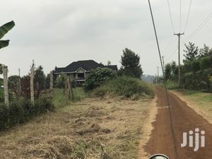 Ruiru Mhasibu