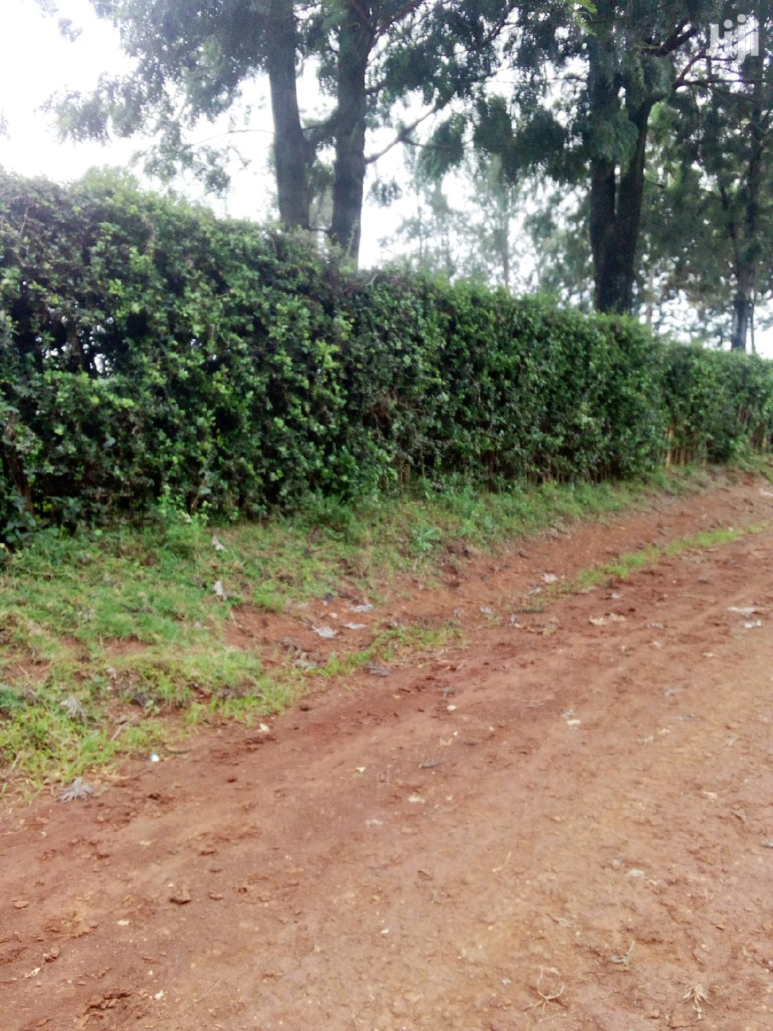 Archive: Land At Kipkeinyo 1/4 Very Prime Land
