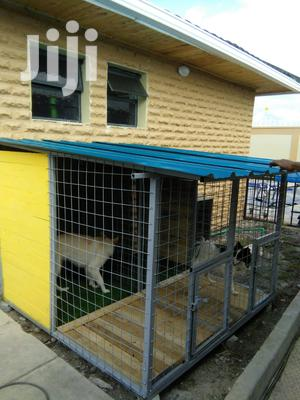 Classy and Cozy Dog Kennels