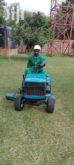 Indoor Plant Care Gardener | Gardening & Landscaping CVs for sale in Nairobi, Karen