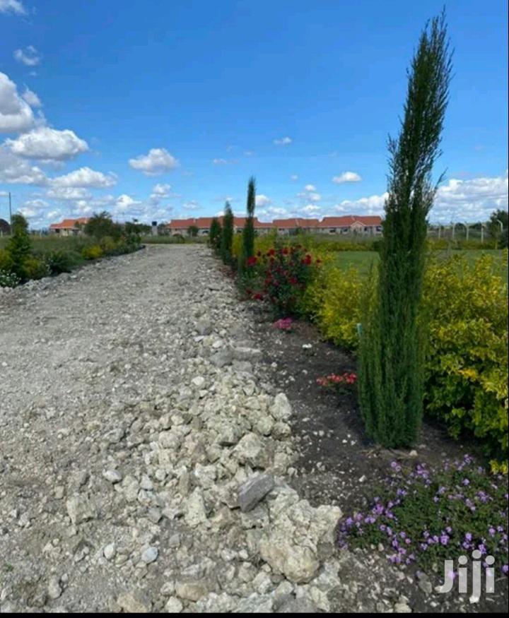 Archive: Intercity Gardens Kitengela