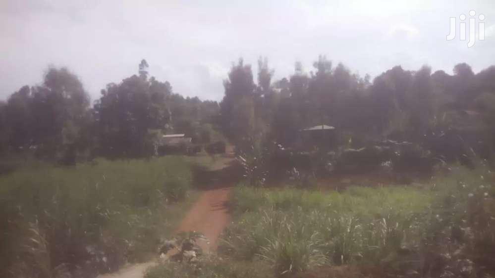 Archive: Half Acre Mugumo Estate Kiambu