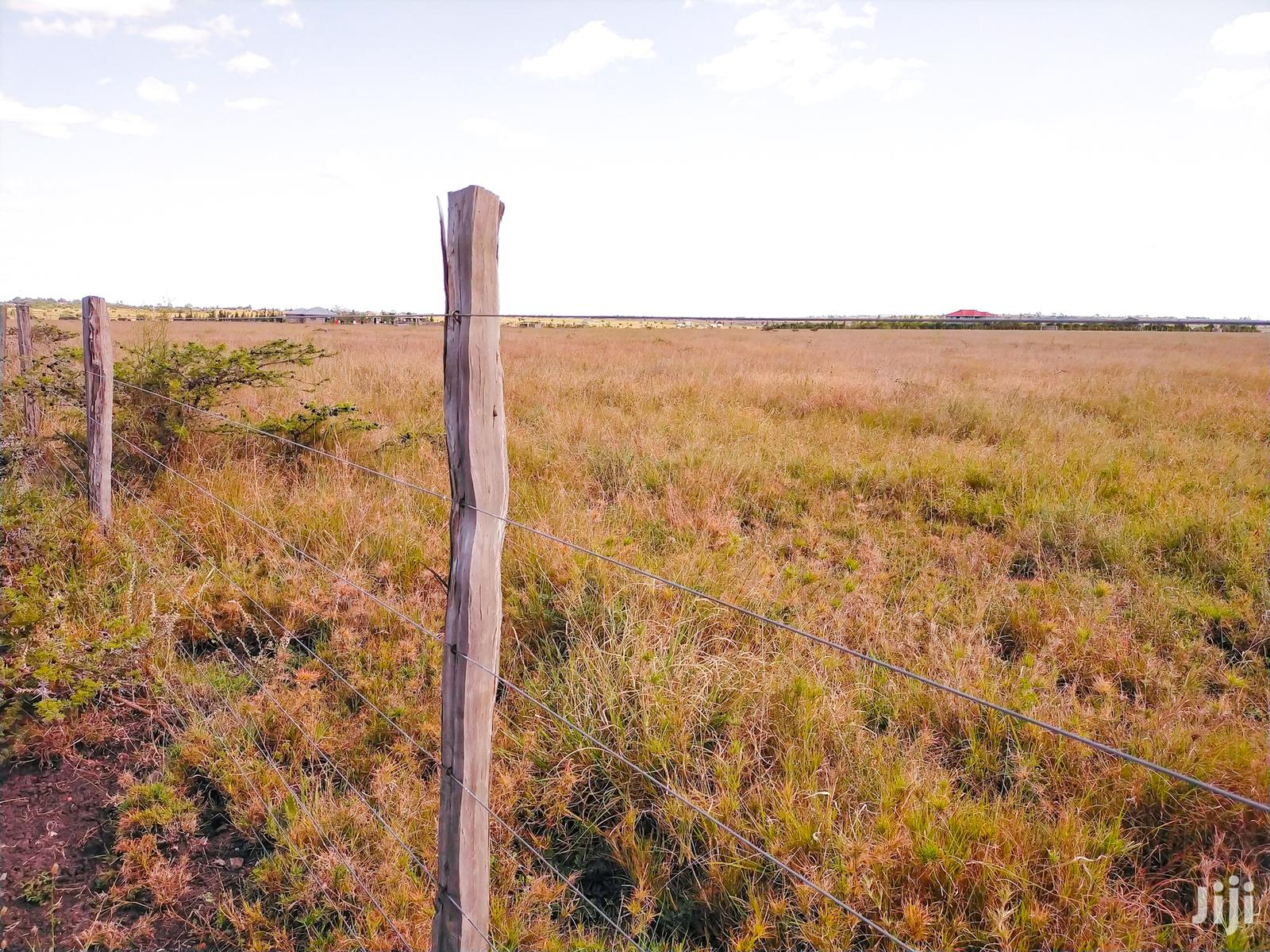 Archive: Kitengela Mbuni 5 Acres Ranch