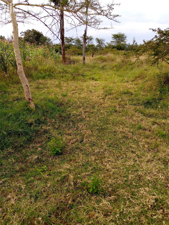 Archive: Plot For Sale In Nakuru Pema Estate