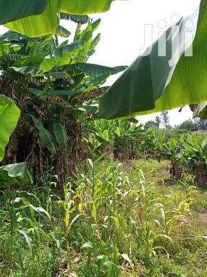 Muranga 7 Acres For Sale At Maragua | Land & Plots For Sale for sale in Murang'a, Township G