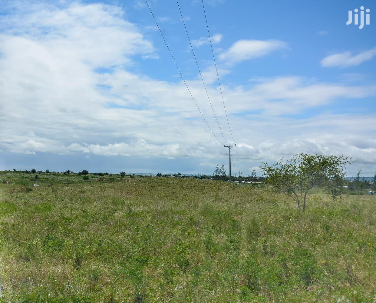 Affordable Plots for Sale in Mariakani