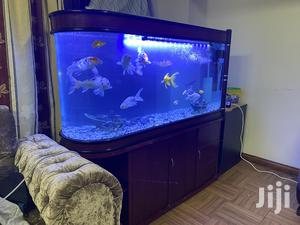 Fish Tank For Sale Including Fishers