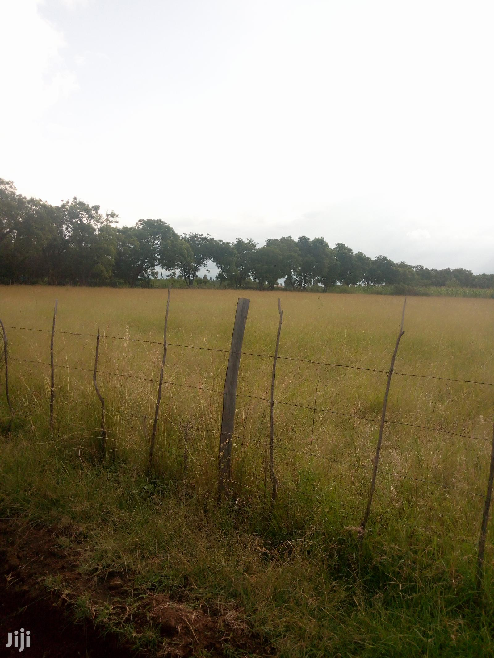Archive: 2acres Land for Sale
