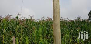 Prime 5 Acres Land for Sale Tugen Estate Moiben Eldoret   Land & Plots For Sale for sale in Uasin Gishu, Eldoret CBD