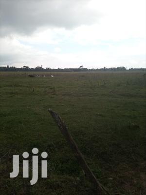 10 Acres Ndunyu Njeru Kinangop Nyandarua Agricultural Land   Land & Plots For Sale for sale in Nyandarua, North Kinangop
