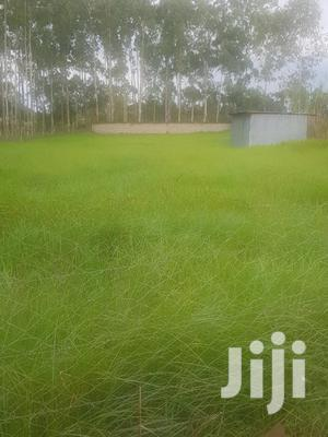 Half an Acre of Land in Kerarapon, 14th South Drive,   Land & Plots For Sale for sale in Nairobi, Karen