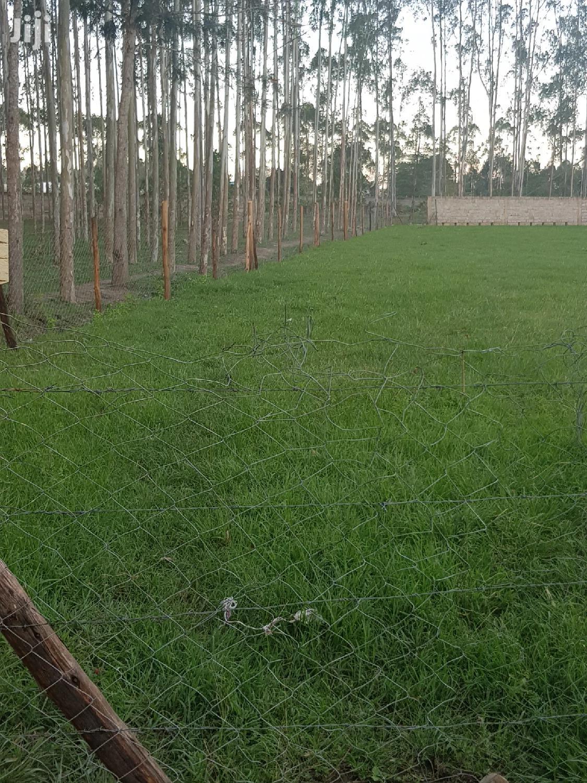 Half an Acre of Land in Kerarapon, 14th South Drive,   Land & Plots For Sale for sale in Karen, Nairobi, Kenya
