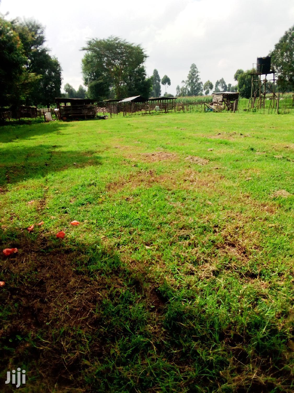 Archive: Land Kerita 150 Acres For Lease