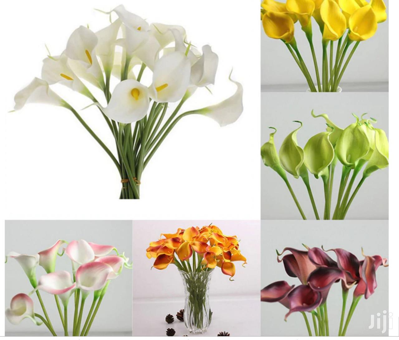 Long Calla Lily Flowers