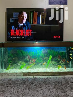 TV Stand Aquarium   Fish for sale in Nairobi, Karen