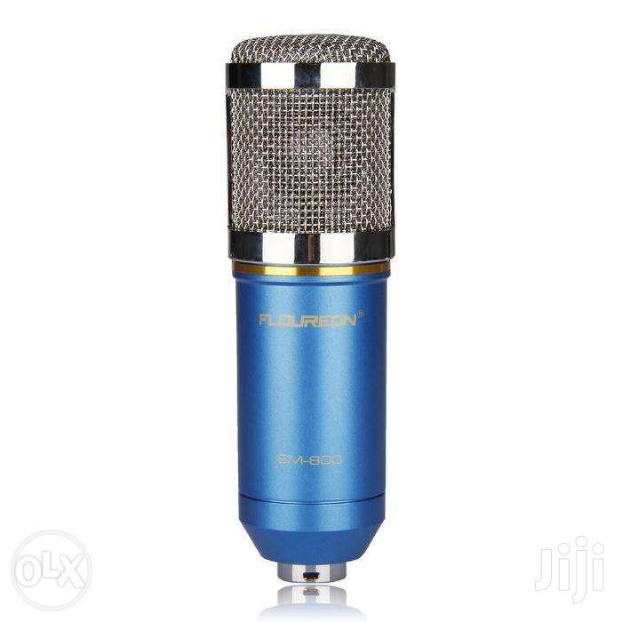 BM-800 Condenser Studio Recording Broadcasting Microphone