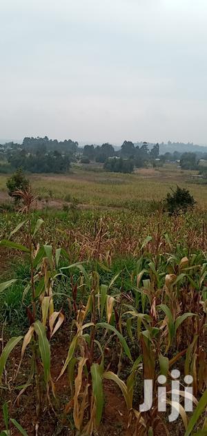 2 Acres of Land on Sale at KIKUYU   Land & Plots For Sale for sale in Kiambu, Kikuyu