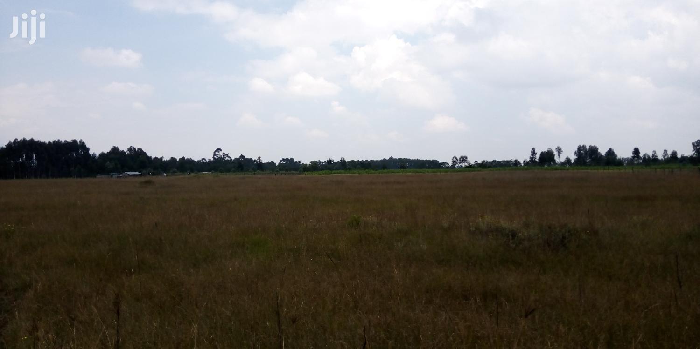 50 Acres For Lease, Nyandarua ,Kipipiri