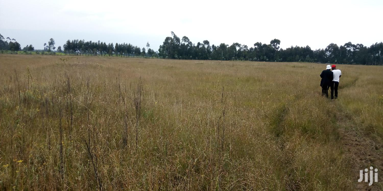 50 Acres For Lease, Nyandarua ,Kipipiri | Land & Plots for Rent for sale in Kipipiri, Nyandarua, Kenya