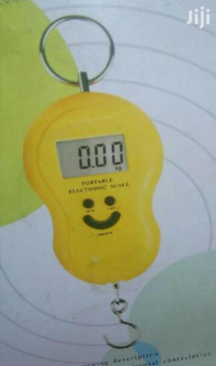 Affordable 50kgs Digital Hanging Scale