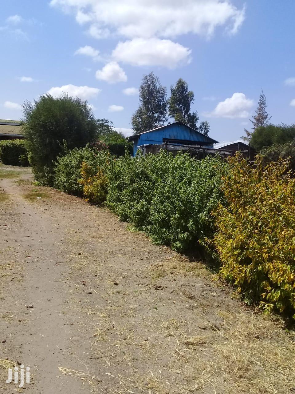 2acres Konza   Land & Plots For Sale for sale in Kiima Kiu/Kalanzoni, Makueni, Kenya