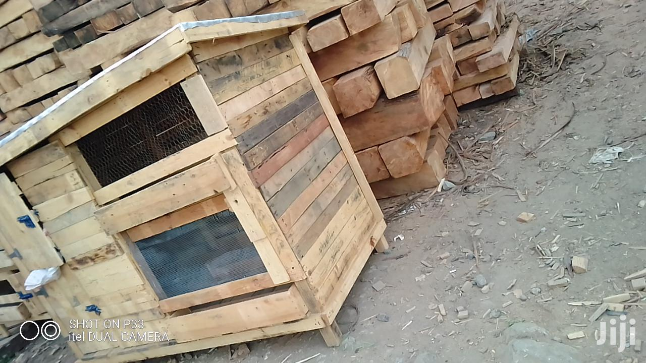 Archive: Kennels And Chicken Houses