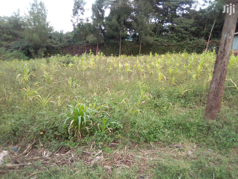 Oloolua Ngong:1/8 Acre on Sale | Land & Plots For Sale for sale in Ngong, Kajiado, Kenya