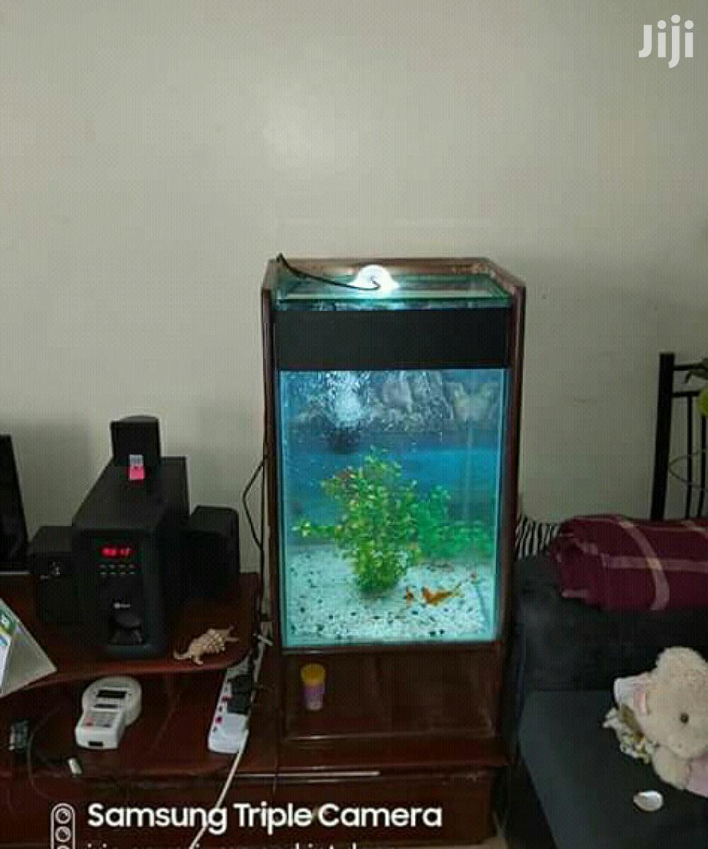 Mini-tower Aquariums.