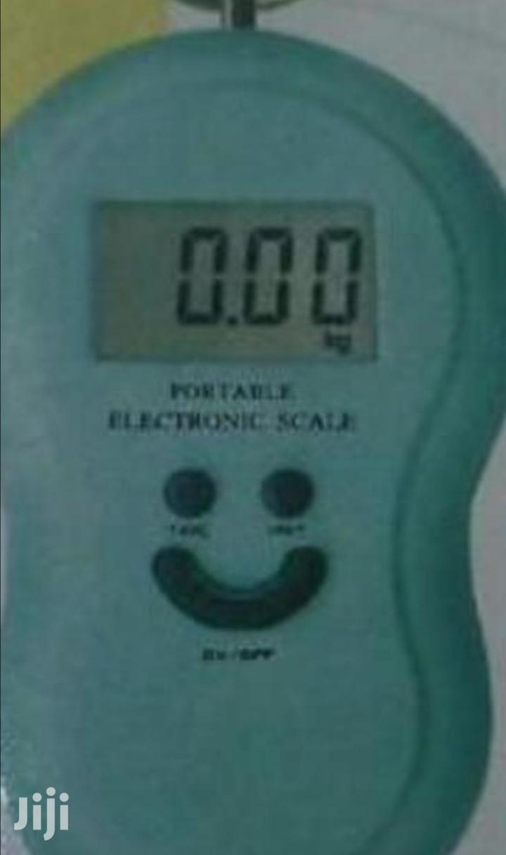 Affordable 50kgs Hanging Scale