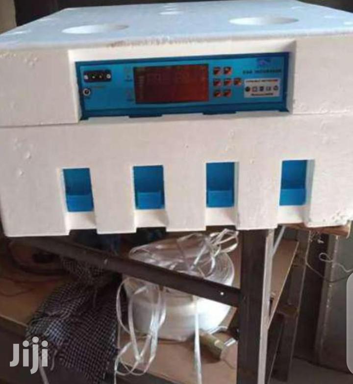Affordable 64 Eggs Automatic Incubator