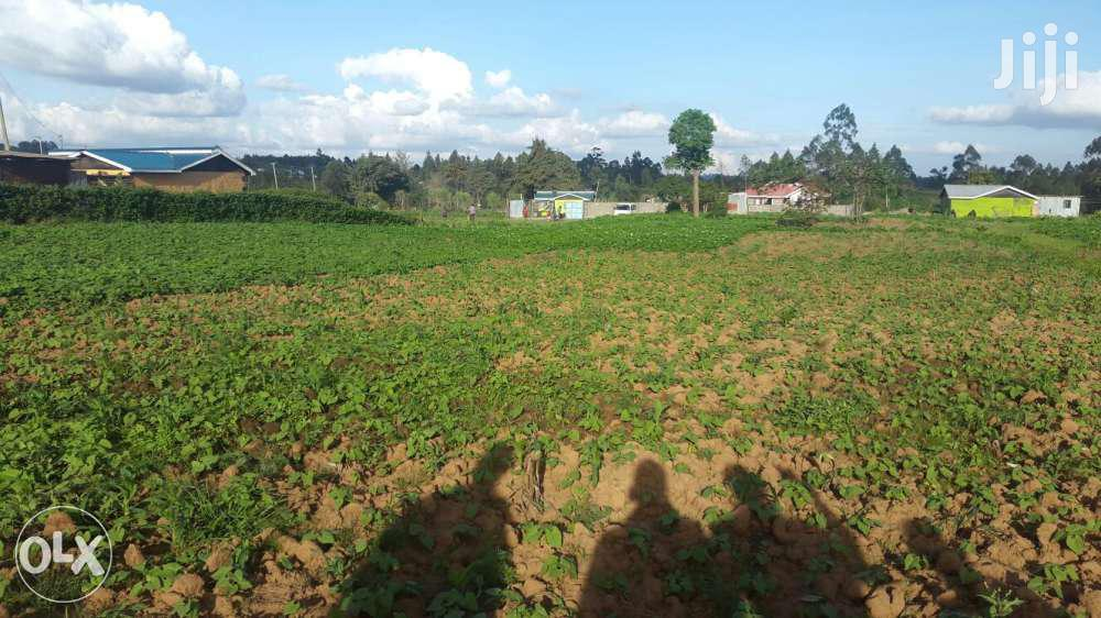 Archive: Land For Sale-1/4 Acre In Kikuyu Kamangu
