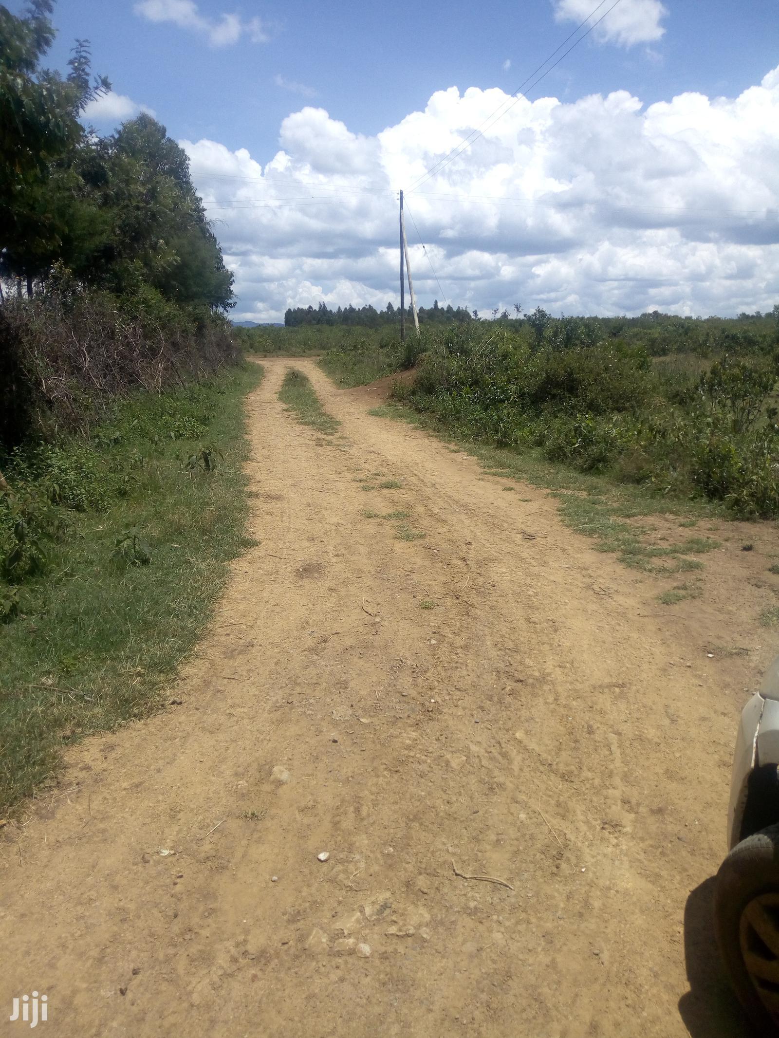 Nyandarua - Gwa Kungu