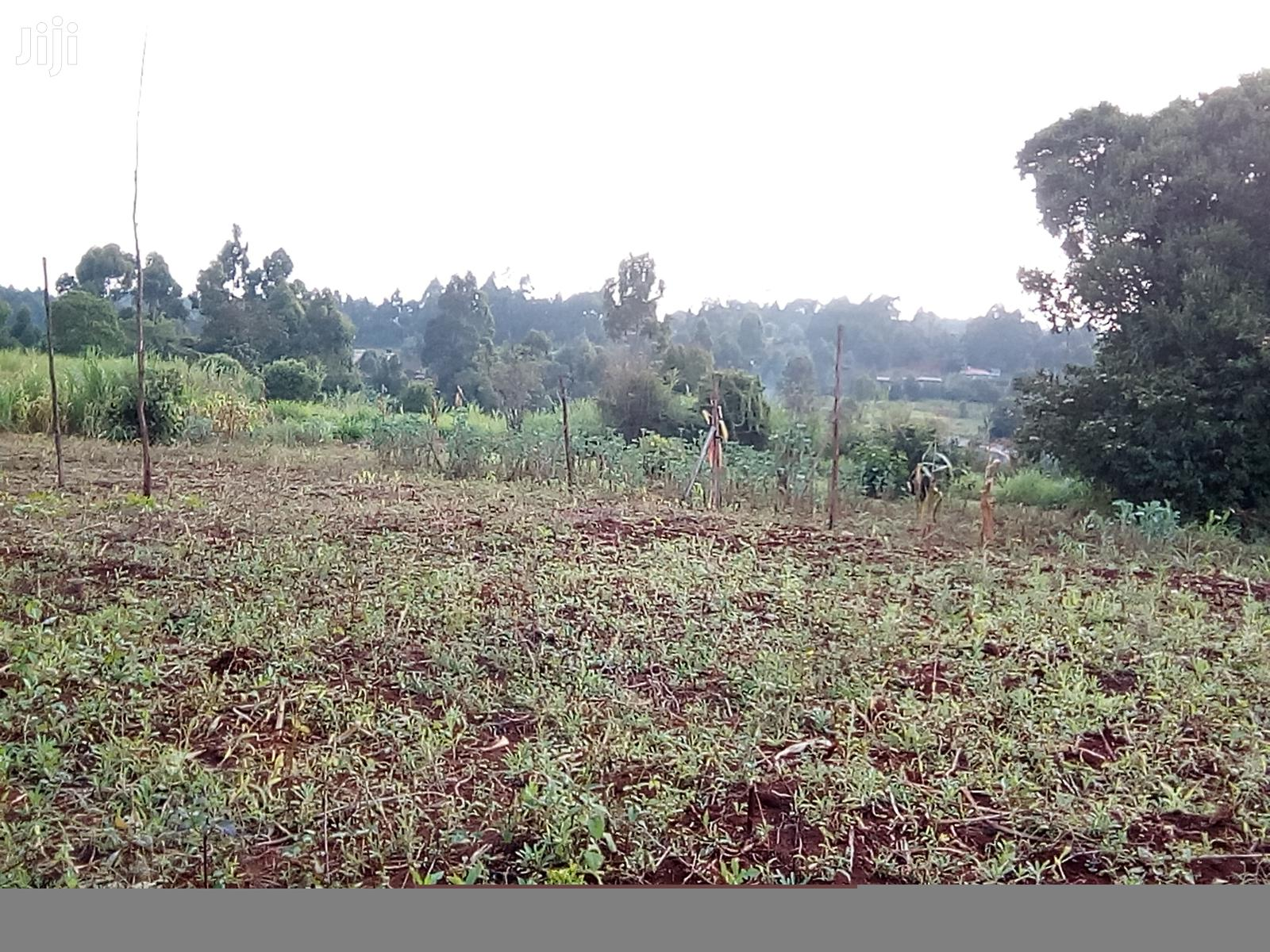 1/2 Acre Prime Land in Kikuyu