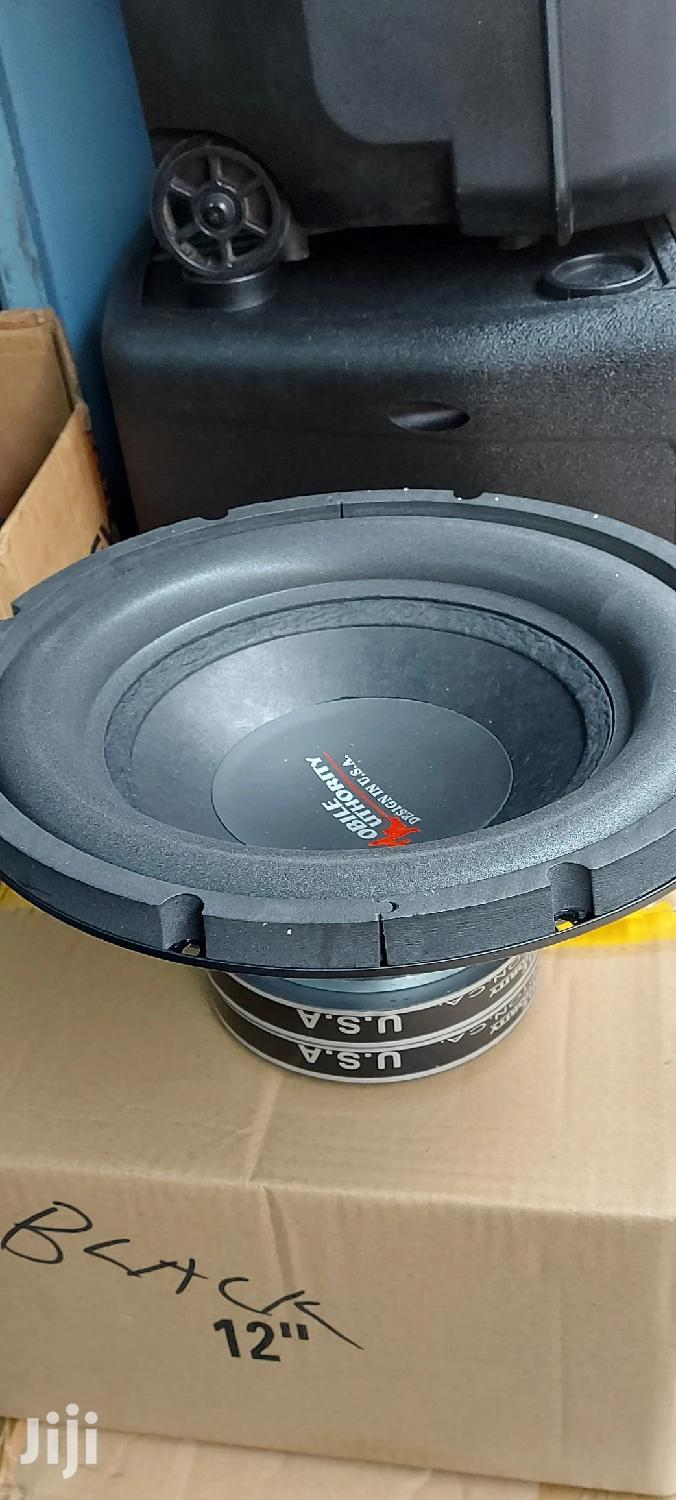 12 Inches Double Magnet Woofer Speaker