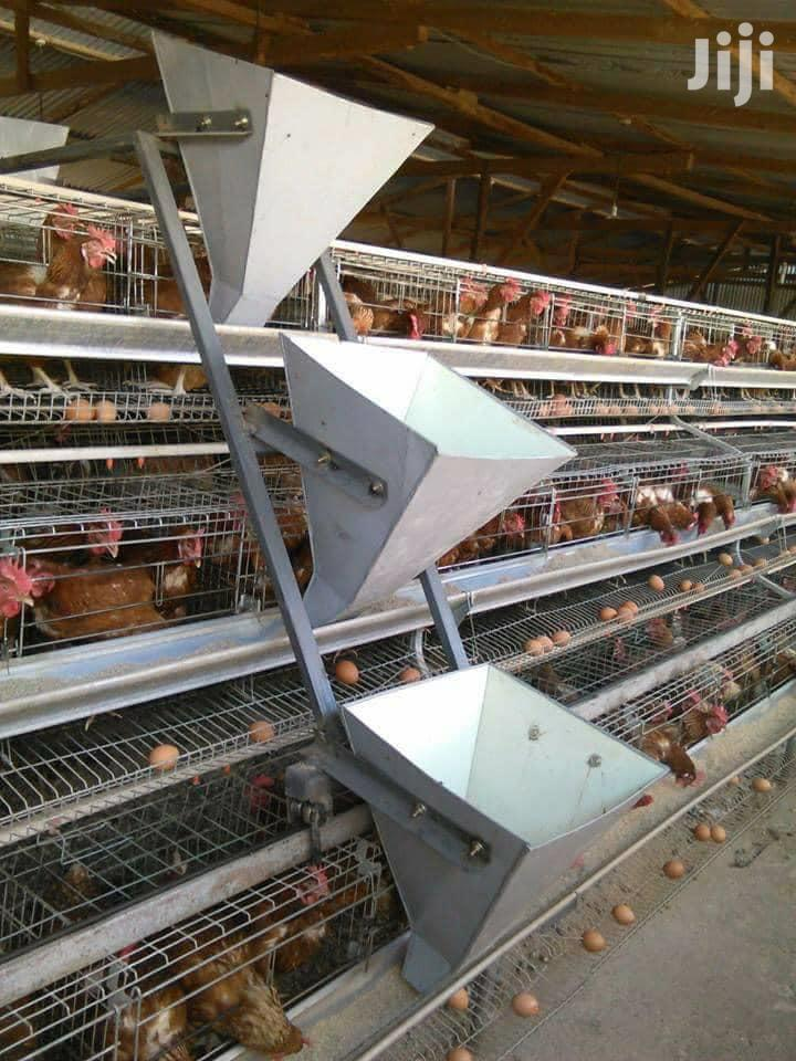 Highly Electro-galvanized Layers Cage For 128 Birds