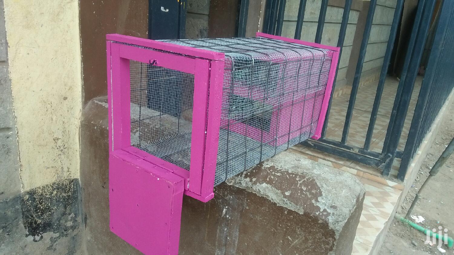 Archive: Cage, House For Birds, Njiwa, Dush, Pigeon And Rabbit