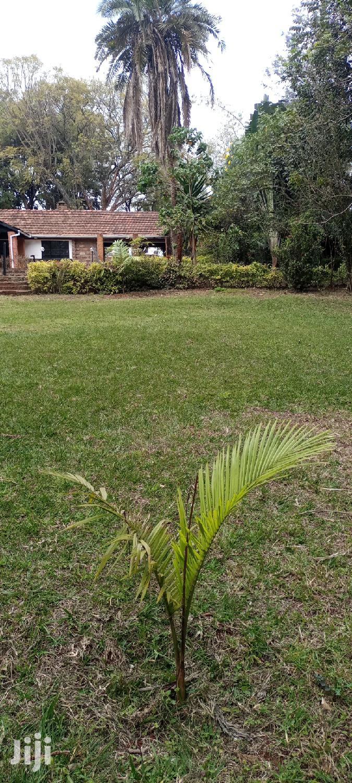 Prime Land For Sale At Lavington Nairobi Kenya   Land & Plots For Sale for sale in Lavington, Nairobi, Kenya