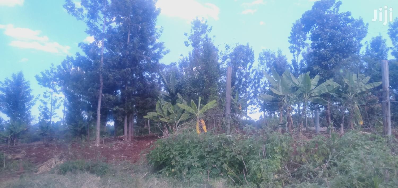 Prime 1/8 Acre Plot | Land & Plots For Sale for sale in Kimorori/Wempa, Murang'a, Kenya