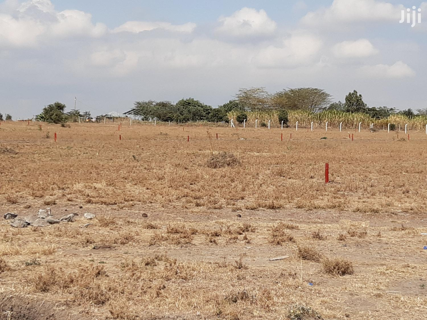 Archive: 50 by 100 Kitengela Plots for Sale
