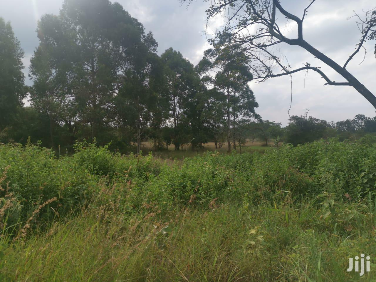 Archive: 100acres Land for Sale in Thika