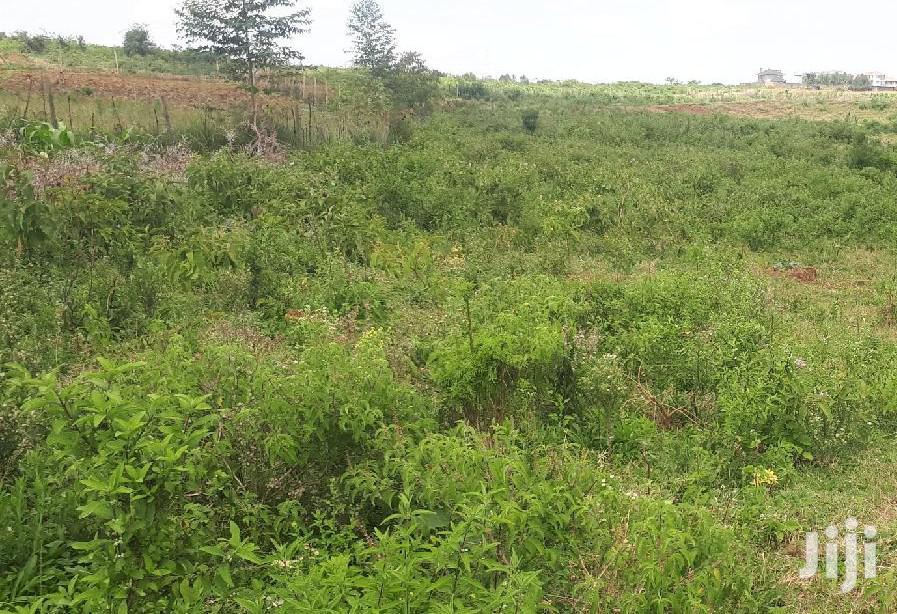 NICE PLOT FOR SALE 1/2 Of An Acre At Umoja Mpeketoni Lamu