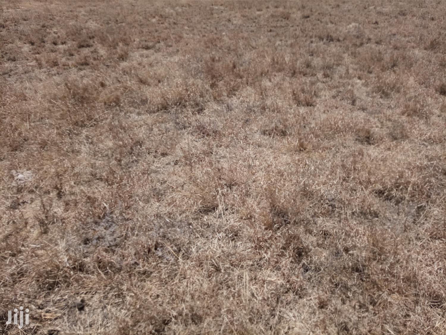 1000acres Kajiad 30kmtrs From Town, Ideal 4 Farming Ranches | Land & Plots For Sale for sale in Keekonyokie (Kajiado), Kajiado, Kenya