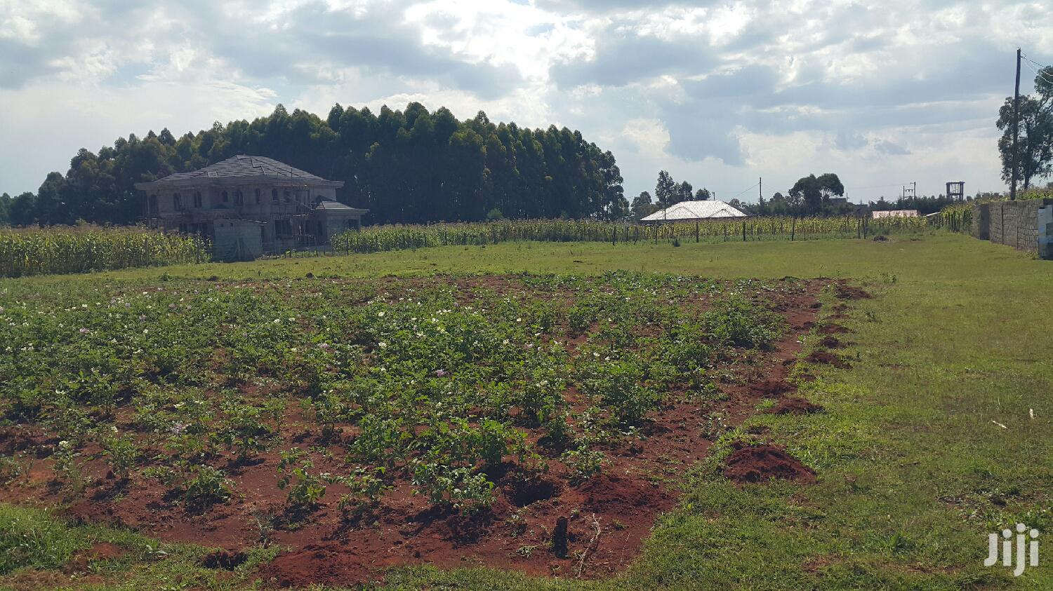 Archive: 1/4 Plot Kiplombe With Title