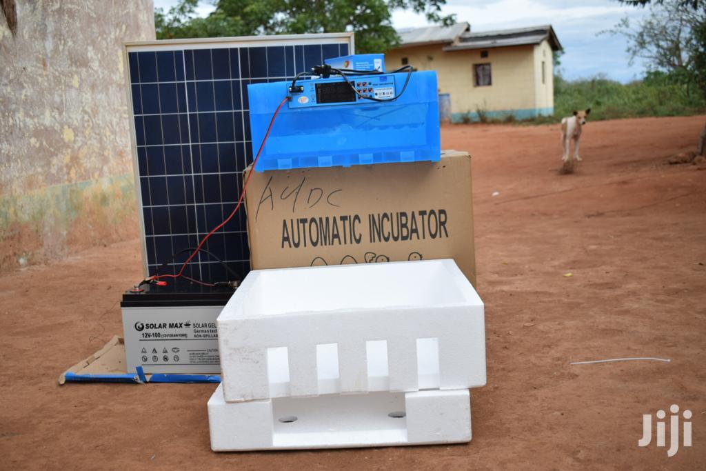 Solar Egg Incubator - Complete Set