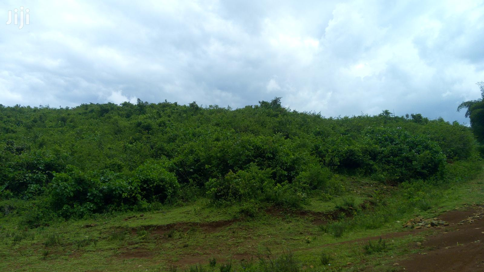 Archive: 1 Acre for Sale at Kiboswa