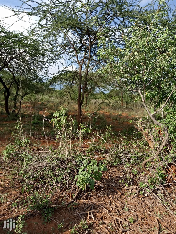 50 Acres Farming Land in Eremit(Near Tinga )At 200k Per Acre