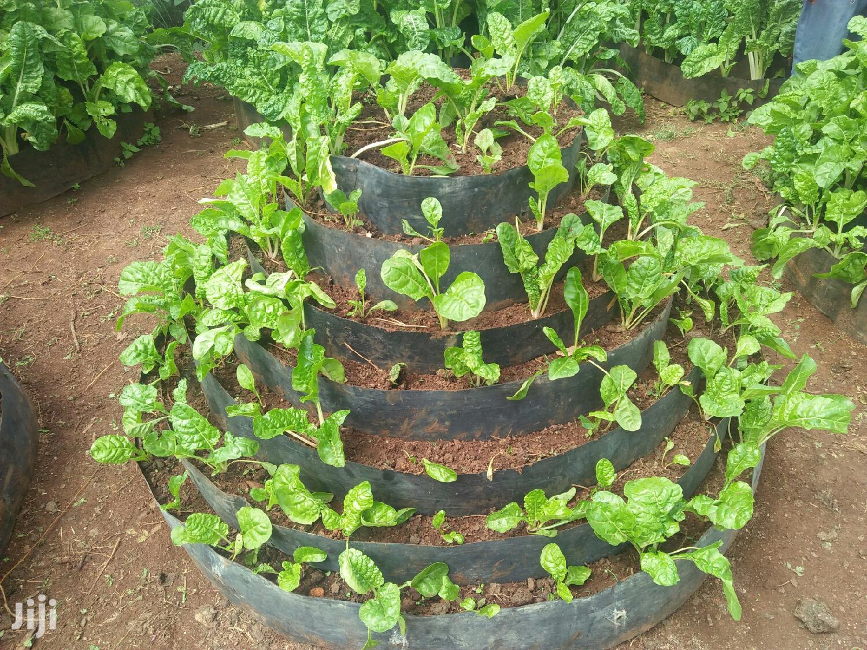 Vertical Gardens | Garden for sale in Karuri, Kiambaa, Kenya